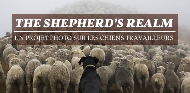 The Shepherd's Realm, un projet photo sur les chiens travailleurs