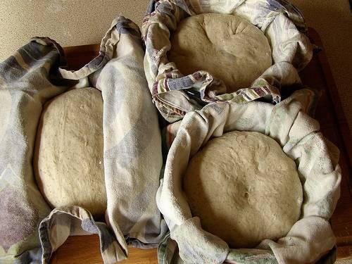 pain levure boulangère déshydratée