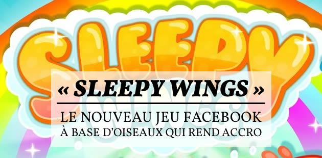 « Sleepy Wings », le nouveau jeu Facebook à base d'oiseaux qui rend accro