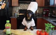 Un chien t'apprend à cuisiner une bruschetta