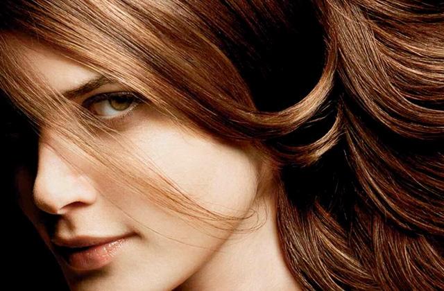 Liv delano le shampooing pour enclin à la chute des cheveux lénergie de la croissance les rappels
