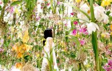 L'incroyable installation florale de TeamLab à Tokyo