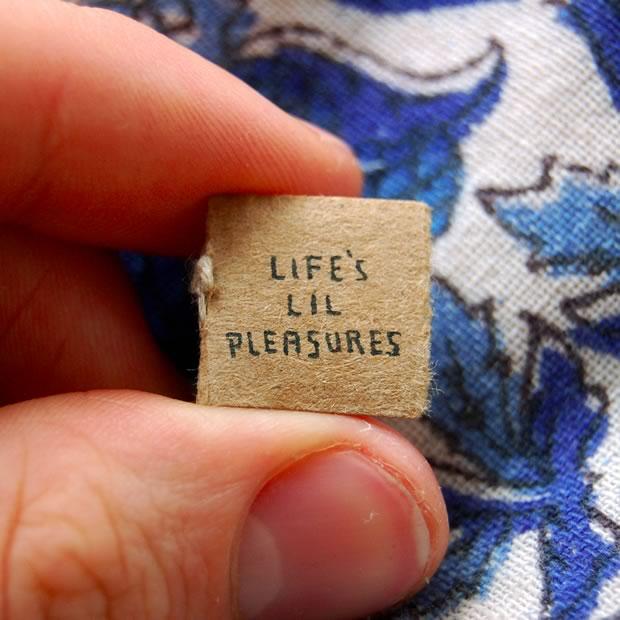lifes-lil-pleasures-1