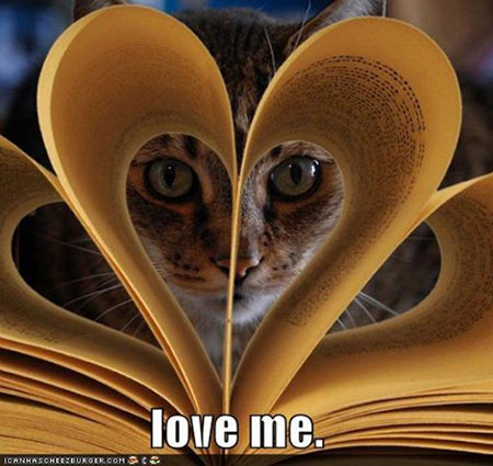 vie-chat-love-me