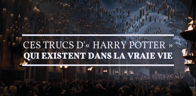 big-harry-potter-vraie-vie