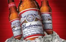 Budweiser dérape avec son slogan #UpForWhatever, aux accents de culture du viol