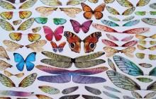 De superbes insectes faits en… pièces d'ordinateurs