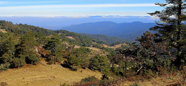 Mexique Cuajimoloyas paysage montagnes