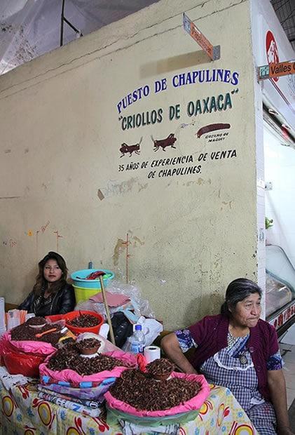 marché oaxaca sauterelles chapulines