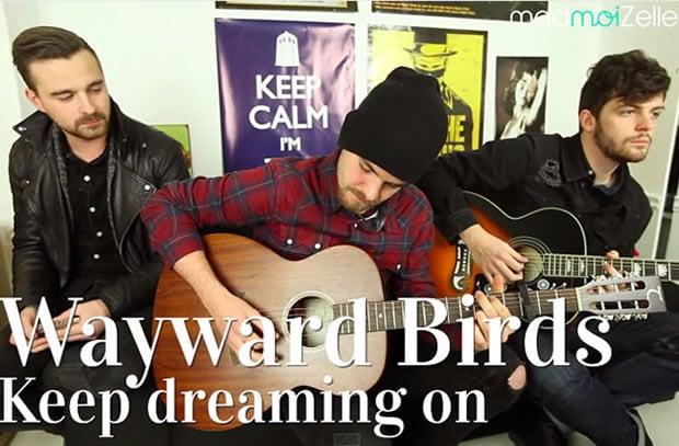wayward-birds-acoustique