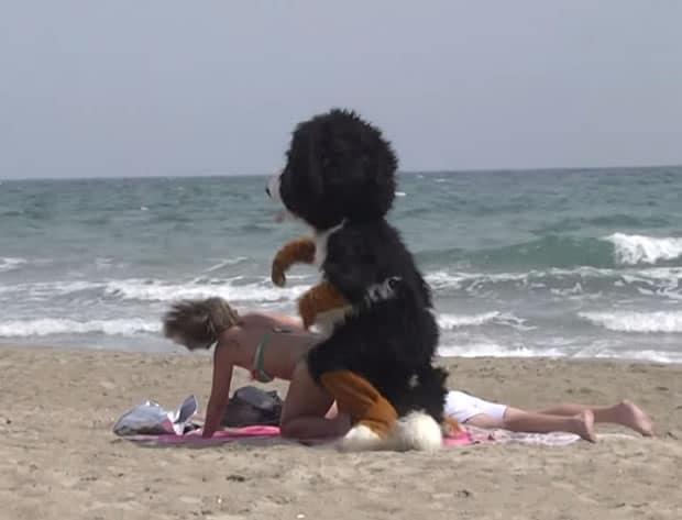 remi-gaillard-dog-levrette-plage