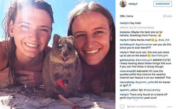 animaux-bonne-tete-quokka-selfie