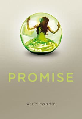 selection-gallimard-promise
