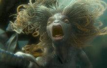 Tout ce que j'espère voir dans l'adaptation ciné des «Animaux Fantastiques» de J.K. Rowling
