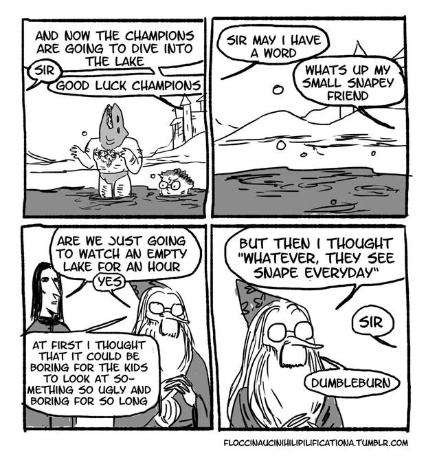 dumbledore-betise-5