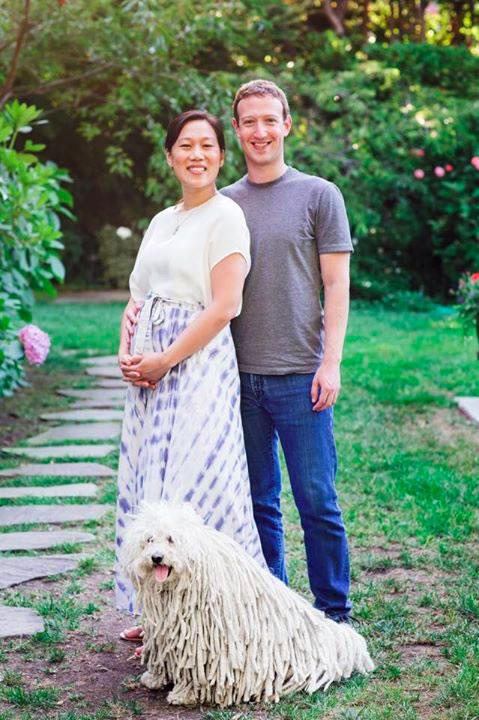 mark-zuckerberg-annonce-grossesse
