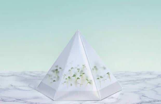 microgarden 2