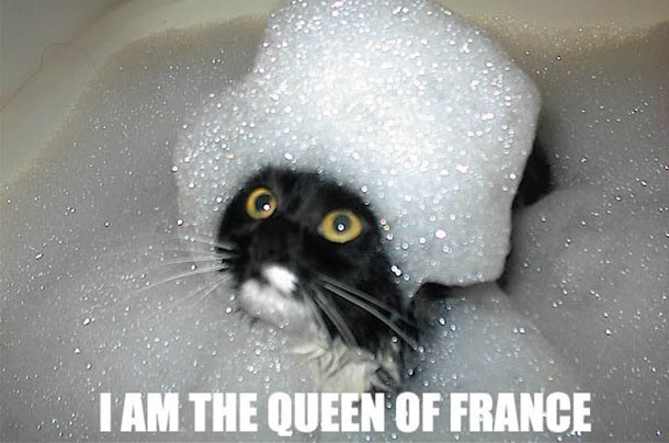 si-jetais-chat-lolcat-queen