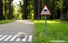 « Tiny Road Signs », les panneaux de signalisations pour animaux