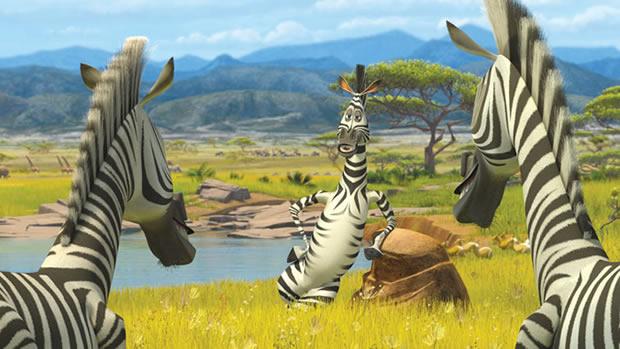 zebre-madagascar