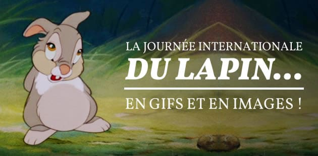 big-journee-lapin-gifs-images