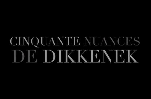 «Cinquante nuances de Dikkenek», le mashup inattendu