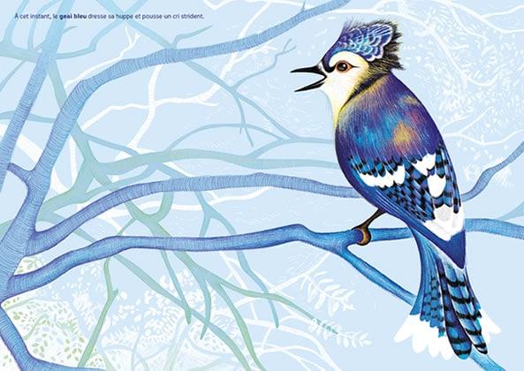 heure-bleue-geai