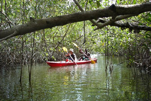 ucpa-delta-afrique-kayak