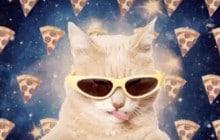Run The Jewels dévoile «All Meow Life», un clip fort en lolcats