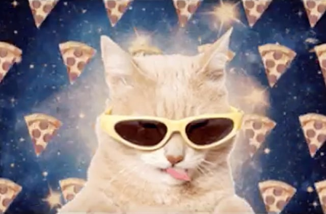 Run The Jewels dévoile « All Meow Life », un clip fort en lolcats
