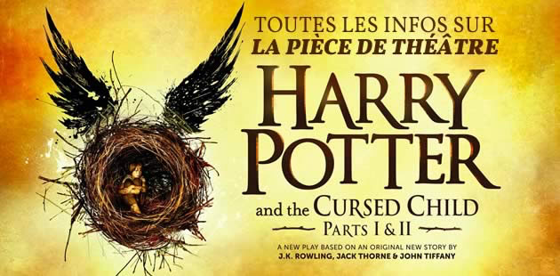 big-harry-potter-cursed-child-piece-theatre-livre
