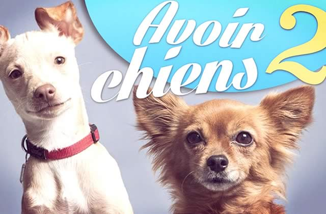 Natoo parle de ses deux chiens, Kitty & Lola