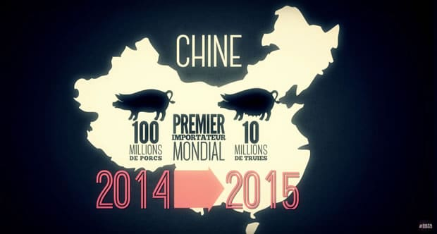 datagueule-boucherie-consommation-chine