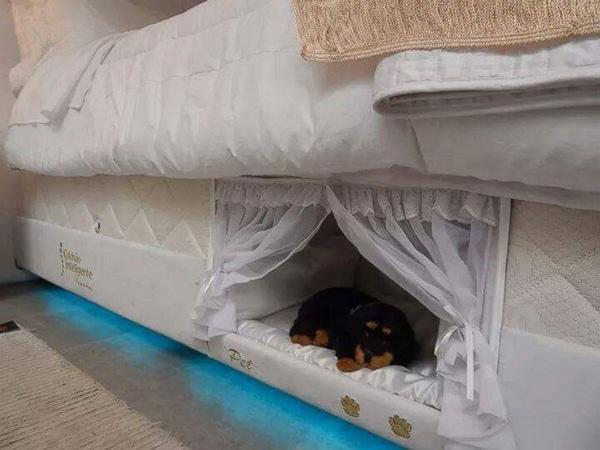 un matelas avec panier pour chien int gr pour faire de beaux r ves avec son ami quatre pattes. Black Bedroom Furniture Sets. Home Design Ideas
