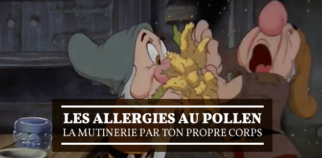 big-allergies-pollen-temoignage