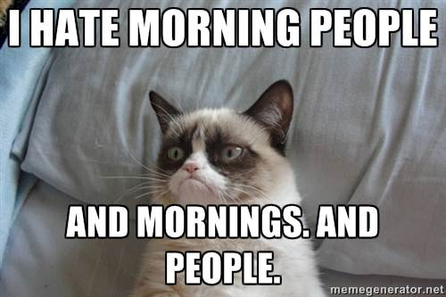 commandements-matin-grumpy-cat
