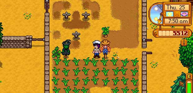 stardewvalley4