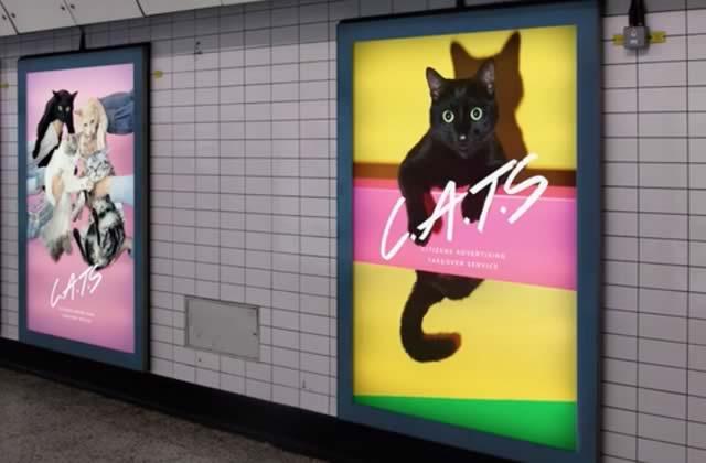 Des affiches de chats à la place des pubs dans le métro, une idée qui fait ronronner