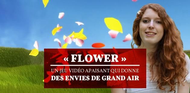 big-flower-jeu-video