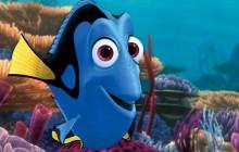 Les «Dory», poissons chirurgiens bleus, menacés d'extinction?