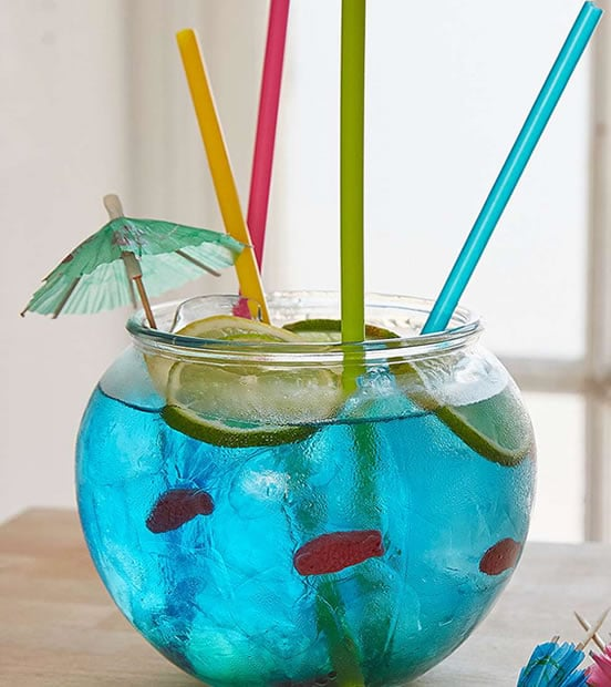 kit-boisson-aquarium