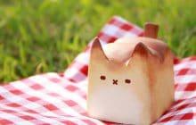 Les brioches en forme de chat, petite mignonnerie… qui ne se mange pas (v'là le seum)