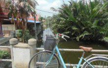 Découvertes, chaleur et bouffe à foison — Carte postale de Bangkok