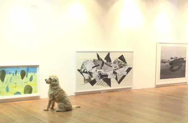 Une expo rien que pour les chiens à Londres !