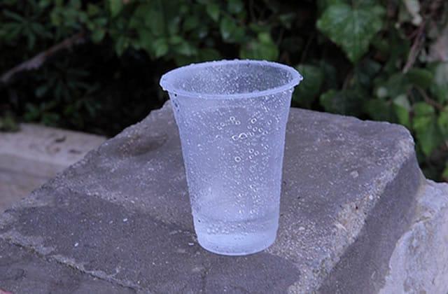 La vaisselle jetable en plastique, interdite dès 2020 en France