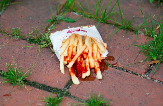 Une application pour lutter contre le gaspillage alimentaire, la bonne idée du jour