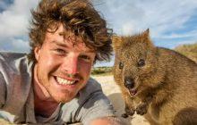 Comment prendre un selfie avec un animal sauvage sans avoir l'air zozo?