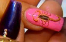 Le nail-art scorpion met du piquant sur vos ongles — WTF Beauté