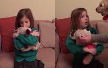 Des parents offrent un chiot à leur fille dans une vidéo feel good
