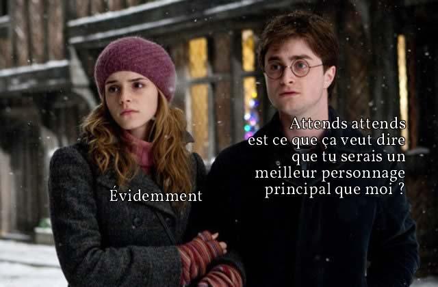 Hermione Granger et la fois où J'AI ENCORE SAUVÉ TOUT LE MONDE CAR C'EST N'IMPORTE QUOI CETTE ÉCOLE